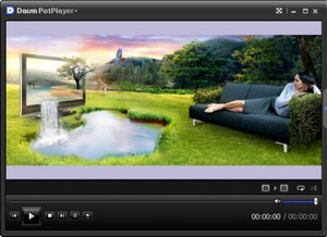Daum PotPlayer 1.5.27774 -(Rus/Eng - Portable)