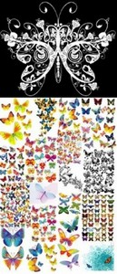 Butterflies Vector Images Bundle
