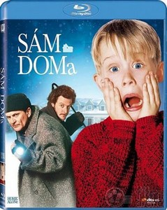 Один дома / Home Alone (1990) HDRip + BDRip-AVC + DVD5 + BDRip 720p + BDRip 1080p