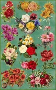 скачать клипарты цветов: