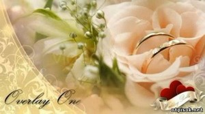 Wedding Bells - A Dream Wedding Pack — After Effects Project (Videohive)