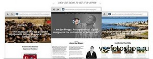 WooThemes - The One Pager v1.0.1 - Wordpress Template