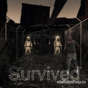 Survived (2013/PC/RUS)