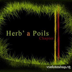 Herb' a Poils Grass Brushes