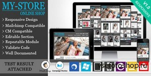 ThemeForest - MyStore - Responsive E-commerce Email Template - RIP