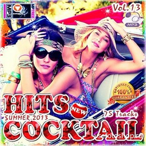 Hits Cocktail Vol.13 (2013)