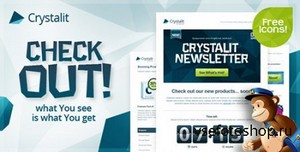 ThemeForest - Crystalit Newsletter - What U See Is What U Get - FULL