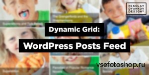 CodeCanyon - Dynamic Grid: WordPress Posts Feed Slider v1.1.1