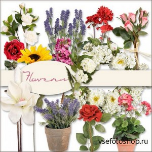 Scrap Kit - Flowers 5 PNG Files