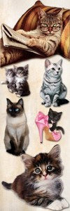 Cats and Kittens PNG and JPG Files