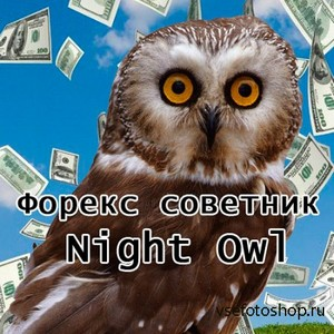 "Forex советник ""Night Owl"""
