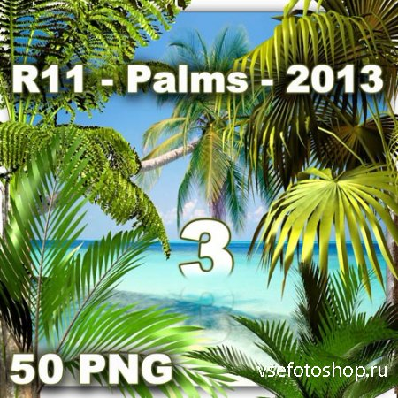 Palms 3 PNG Files