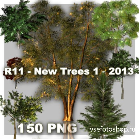 New Trees PNG Files