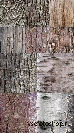 Tree Bark Textures  JPG Files
