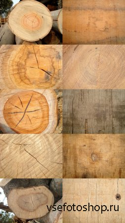 Wooden Texture Slices JPG Files
