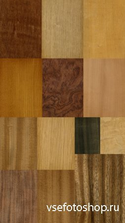 Collection of thirty Different Textures of Wood