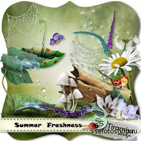 Scrap - Summer Freshness PNG and JPG Files