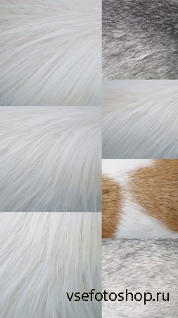 Dog Hair Textures JPG Files