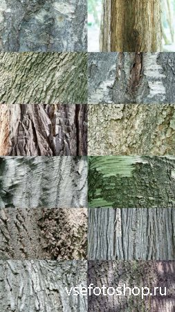 Wood Textures Pack 5 JPG Files
