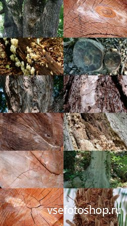 Wood Textures Pack 7 JPG Files