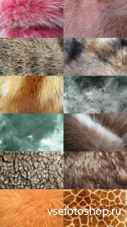 Animal Fur Textures 2 JPG Files